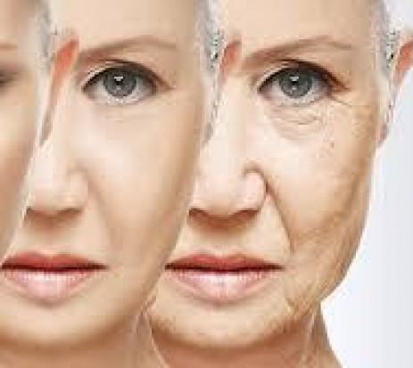 O segredo sobre envelhecimento e saúde corporal que você não sabia - Glicação, AGEs e Acrilamida